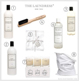 Vicky Barone Feature on the Laundress Blog