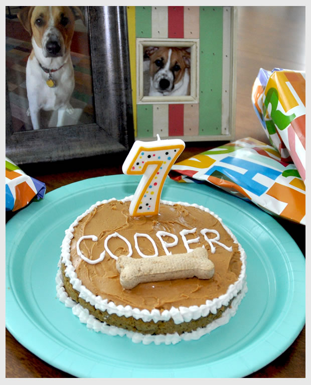 Dog Friendly Cake Frosting
