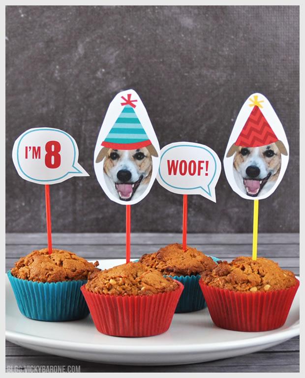 Happy 8th Birthday Cooper Dog Vicky Barone