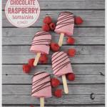 Chocolate Raspberry Rumsicles