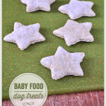 Baby Food Dog Treats
