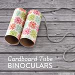 DIY Cardboard Tube Binoculars
