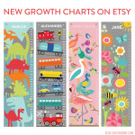New Growth Charts on Etsy