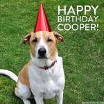 Happy 9th Birthday, Cooper!