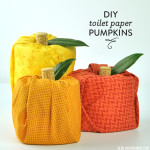 DIY Toilet Paper Pumpkins
