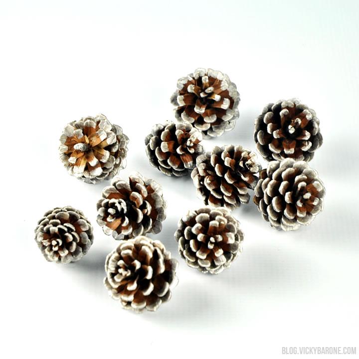 pinecones_3