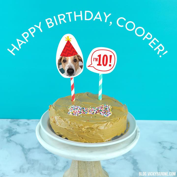 Happy 10th Birthday Cooper Vicky Barone
