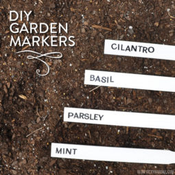 DIY Paint Stick Garden Markers | Vicky Barone