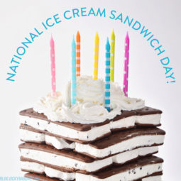 Happy National Ice Cream Sandwich Day! | 12 Delicious and Creative Ice Cream Sandwich Recipes | Vicky Barone
